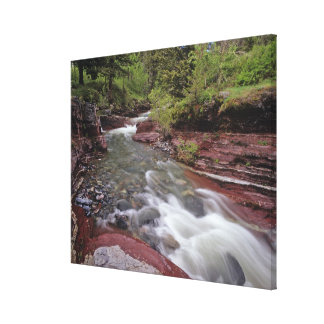 Lost Horse Creek in Waterton Lakes National Park Stretched Canvas Print