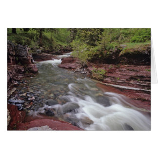 Lost Horse Creek in Waterton Lakes National Park Cards