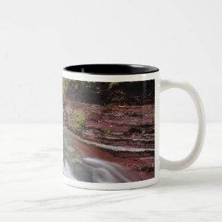 Lost Horse Creek in Waterton Lakes National Park Two-Tone Coffee Mug