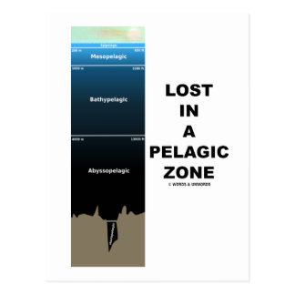 Lost In A Pelagic Zone (Earth Science Ocean) Post Card