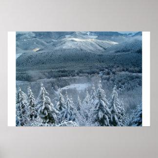 Lost in a winter wonderland poster