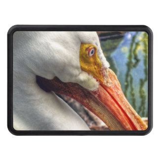 Lost In Memories Trailer Hitch Covers