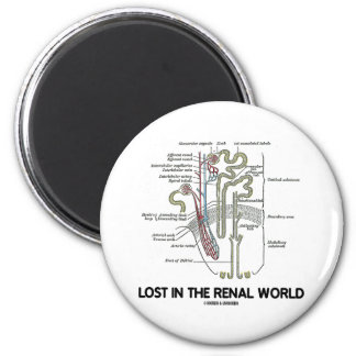 Lost In The Renal World (Kidney Nephron) Magnet