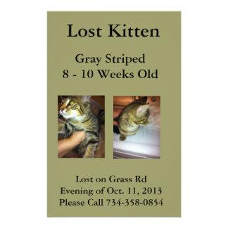 Lost Kitten Flyer