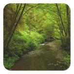 Lost Man Creek I at Redwood National Park Square Sticker