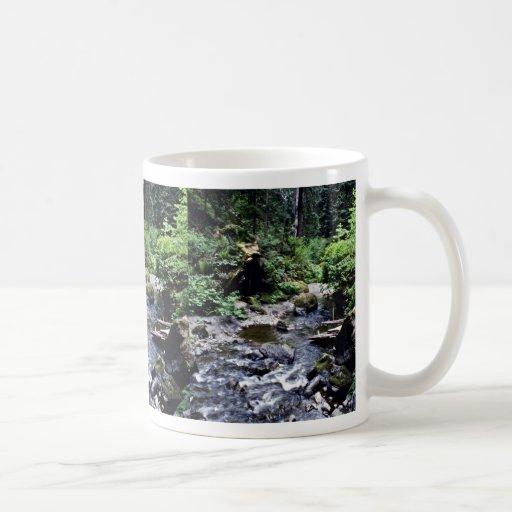 Lost Man Creek - Redwood National Park Coffee Mug