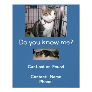 Lost or Found Cat Mailbox Flyer Custom Flyer
