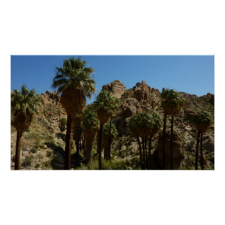 Lost Palms Oasis I at Joshua Tree National Park Poster