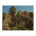 Lost Palms Oasis I at Joshua Tree National Park Wood Print
