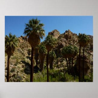 Lost Palms Oasis Print