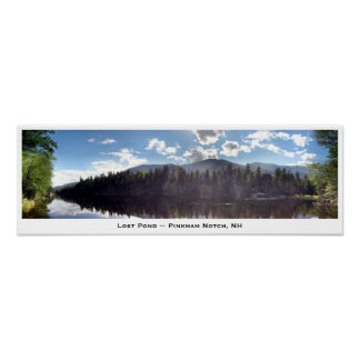 Lost Pond ~ Pinkham Notch, NH Poster