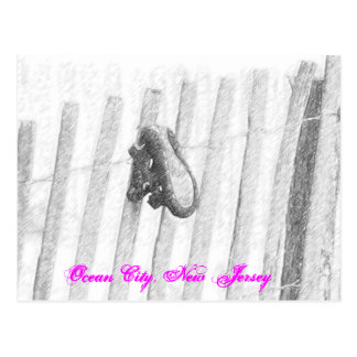Lost Shoe Ocean City, New Jersey Postcard