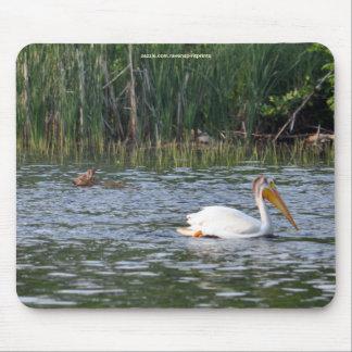 Lost Virginia Deer Fawn & Pelican Wildlife Photo Mouse Pad