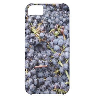 Lote de la uva funda para iPhone 5C