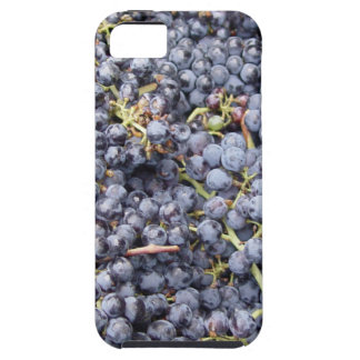 Lote de la uva funda para iPhone 5 tough