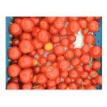 Lotes del tomate, maduro y jugoso tarjeta postal