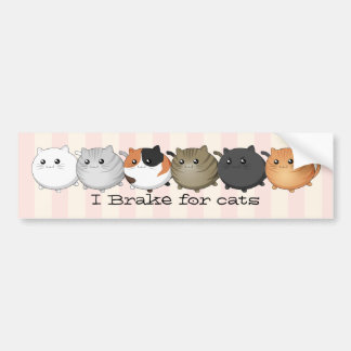 lots and lots of kawaii cats bumper sticker