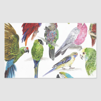 Lots and lots of Parrots on lots and lots of gifts Rectangular Sticker