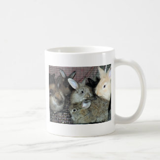 Lots of Bunny Rabbits Real Animal Photo Coffee Mug