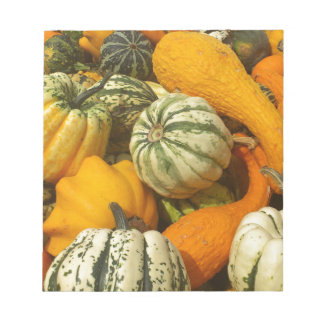 Lots of Colorful Gourds Notepad
