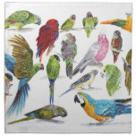 Lots of different Parrots of gifts especially for Napkin