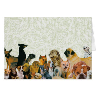 Lots of Dogs Collage Card