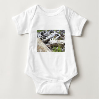 Lots of Driftwood Baby Bodysuit