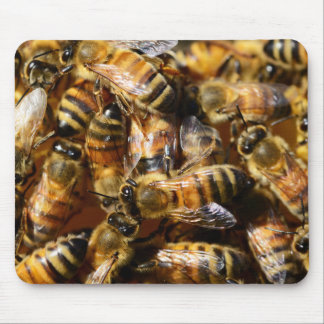 Lots of Honey Bees Mouse Pad