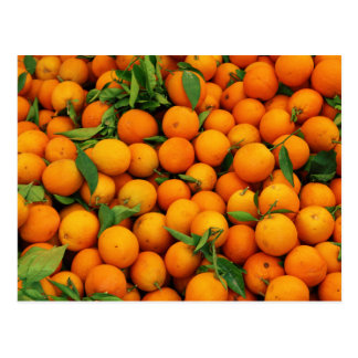 Lots of Oranges Post Card