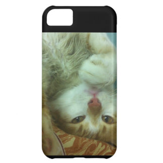 Lots of products with really cute white cat cover for iPhone 5C