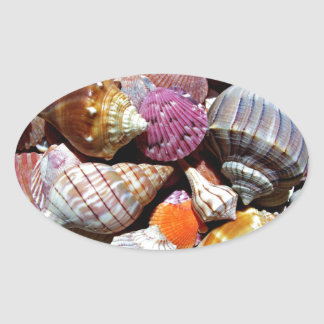 Lots of Seashells by the Sea- Nautical Print Oval Sticker