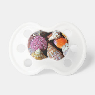 Lots of Seashells by the Sea- Nautical Print Pacifier
