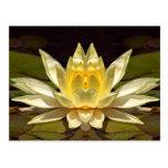 Lotus1 aumentado postales