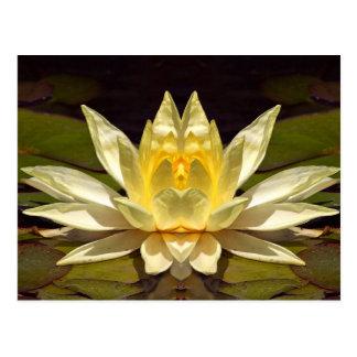 Lotus1 aumentado tarjeta postal