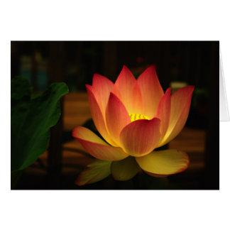 Lotus 1 card
