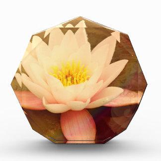 Lotus Acrylic Award
