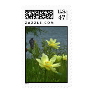 Lotus and Barn Swallow Postage Stamps