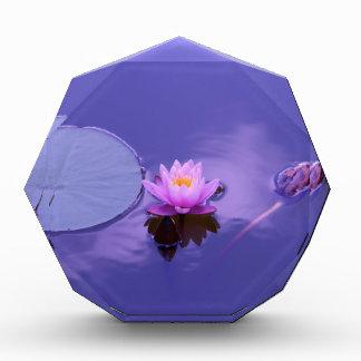 lotus award