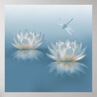 Lotus azul y poster de la libélula póster