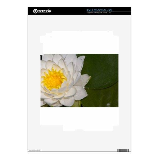 Lotus blanco calcomanía para iPad 2