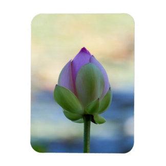 Lotus Bloom Vinyl Magnet