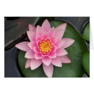 Lotus Blossom #1 Greeting Card