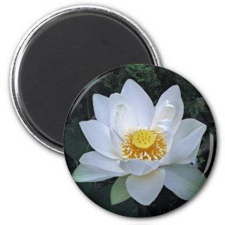 Lotus Blossom 2 Inch Round Magnet
