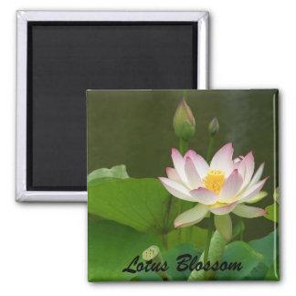 Lotus Blossom 2 Inch Square Magnet