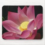 Lotus Blossom Beauty Mouse Pad
