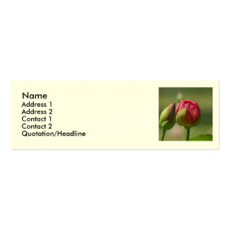 Lotus Blossom Double-Sided Mini Business Cards (Pack Of 20)