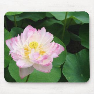 Lotus Blossom Mouse Pad
