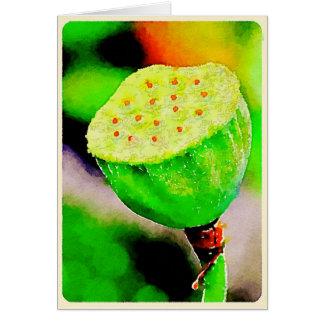 Lotus blossom seed pod card