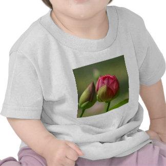 Lotus Blossom T-shirts