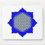 Lotus Blue4